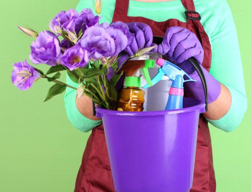 How You Can Get Your Spring Cleaning Done in Half the Time