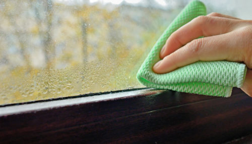 Wiping down surfaces in preparation for allergy season