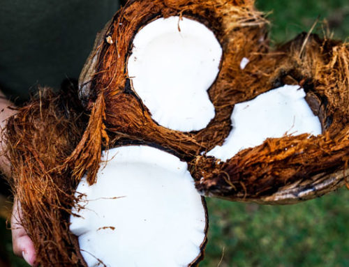 Three Ways to Use Coconut Products Around the House