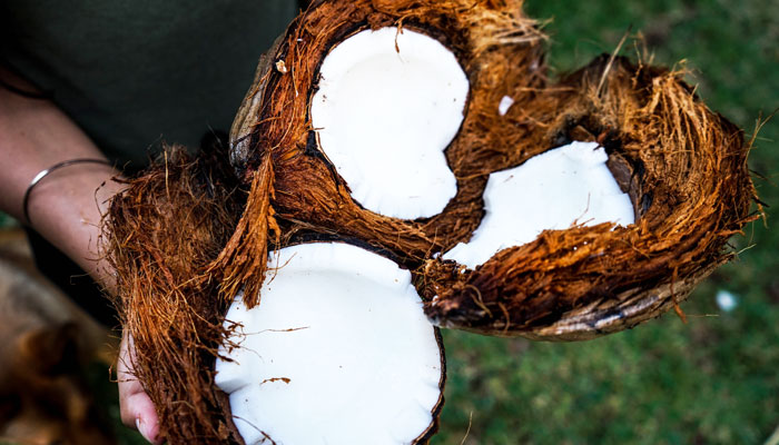 Coconut cleaning products