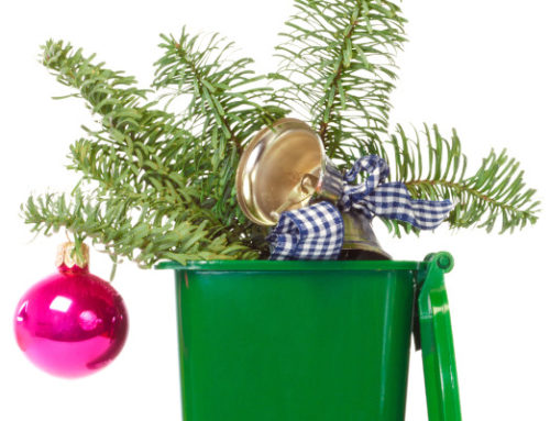 How to Get Rid of Holiday Waste Responsibly