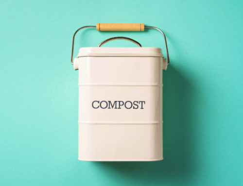 Starting to Compost? Here's How to Keep Things Clean and Odor-Free