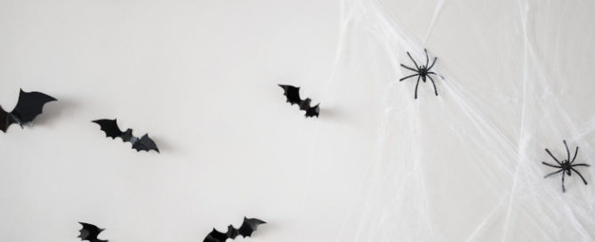 How To Clean Cobwebs - And Keep Them From Coming Back